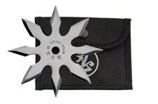 4″ SILVER STAR 8 POINTS